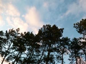 01_A la rencontre du ciel